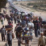 Yo, Tú, El, Nosotros y los Refugiados