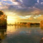CUENTOS CORTOS: A río revuelto…