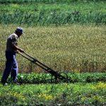 50 años de la reforma agraria: la memoria, patrimonio, comunidad.