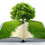 EDUCACIÓN AMBIENTAL: ¿UNA REALIDAD POSIBLE?