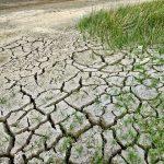 El costo medioambiental del desarrollo económico