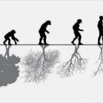 Relación hombre y medioambiente: caótica y autodestructiva