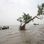 Alteraciones climáticas y deterioro medioambiental