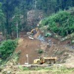 Impacto en los ecosistemas provocados por la acción humana