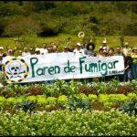 El herbicida con glifosato y Monsanto