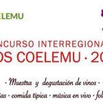 Nuevamente Coelemu lanza prestigioso concurso de vinos en Itata, con el apoyo de la Universidad de Concepción.