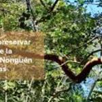 RESERVA NACIONAL NONGUÉN: Oportunidades y Amenazas