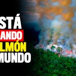JAIR BOLSONARO: EL NERÓN DEL AMAZONAS