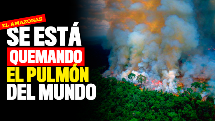 JAIR BOLSONARO: EL NERÓN DEL AMAZONAS – La Ventana Ciudadana