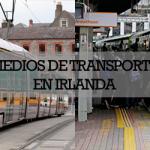 Visible vulnerabilidad: conductores del Transporte Público en tiempos de crisis