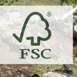 De bosques, plantaciones forestales, certificaciones y sostenibilidad