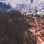 Áreas silvestres del Gran Concepción amenazadas por un nuevo Plan Regulador Metropolitano