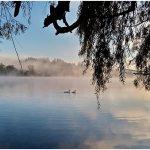 Fallo de la Corte Suprema salva al Humedal Laguna La Señoraza de Laja